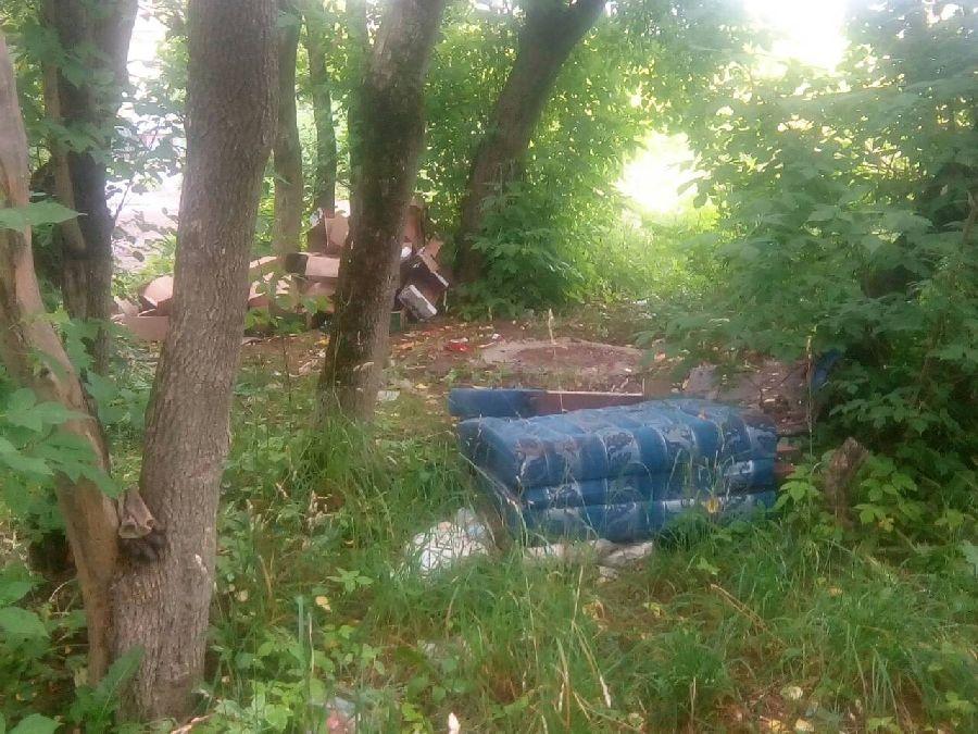 Территорию бывшего дома престарелых в Калуге превратили в помойку