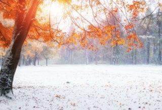 Начало зимы
