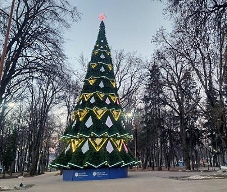 Елка в парке