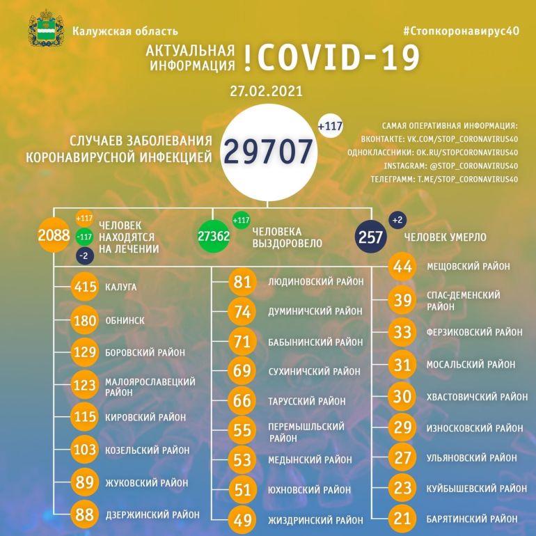 Два человека скончались от коронавируса в Калужской области 27 февраля