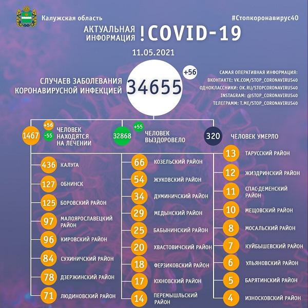 В Калужской области за сутки коронавирусом заболели 56 жителей