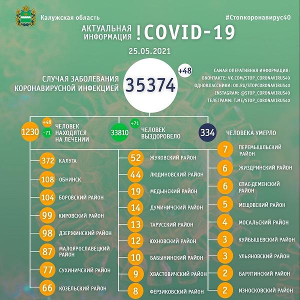 В Калужской области от коронавируса лечатся 1230 человек