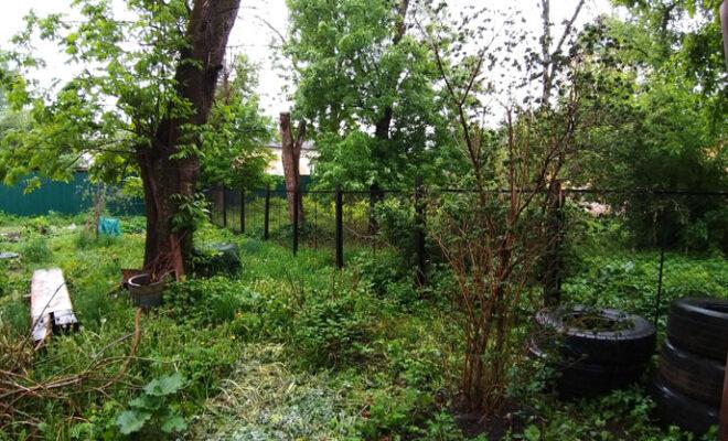 ограда Кутузова