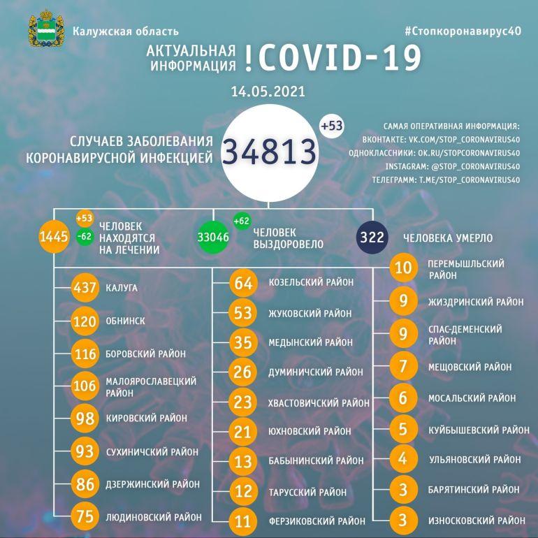 В Калужской области количество больных коронавирусом возросло до 34 813