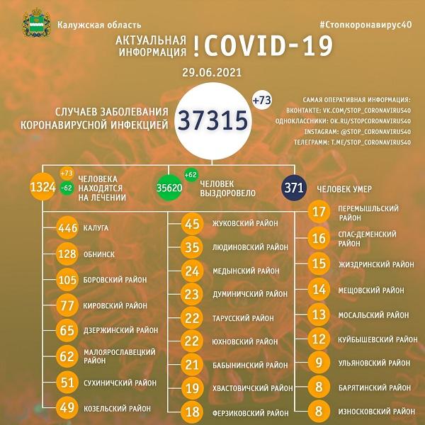 В Калужской области болеют коронавирусом 1324 человека