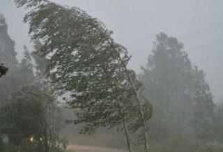 дождь, ветер