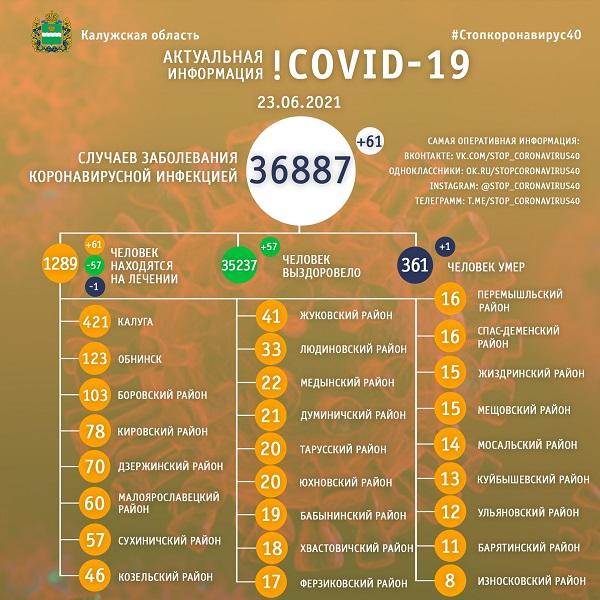 За сутки в Калужской области от коронавируса умер ещё один житель