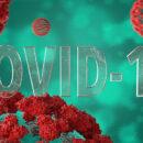 коронавирус6