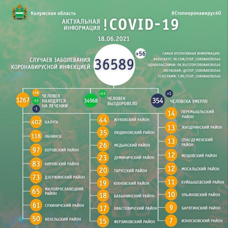 Количество жертв коронавируса в Калужской области увеличилось до 354