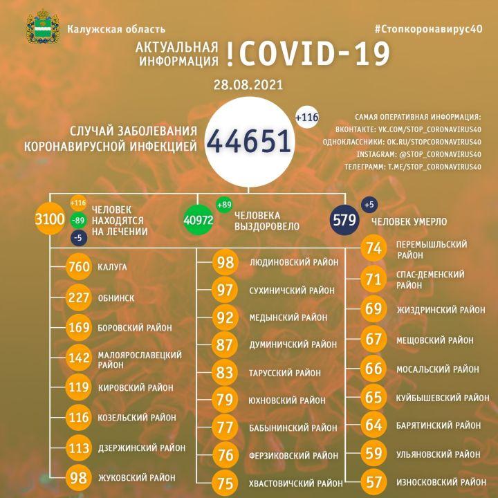 За сутки еще пять человек скончались от коронавируса в Калужской области
