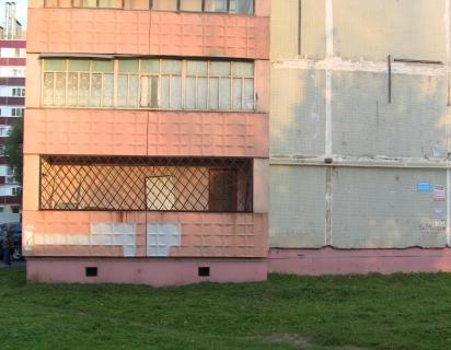 Жителя Калуги подозревают в убийстве соседа из-за котёнка
