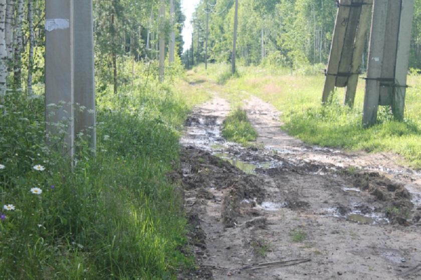 Многодетным Калуги в Большой Каменке дали участки к которым добраться невозможно. Фото