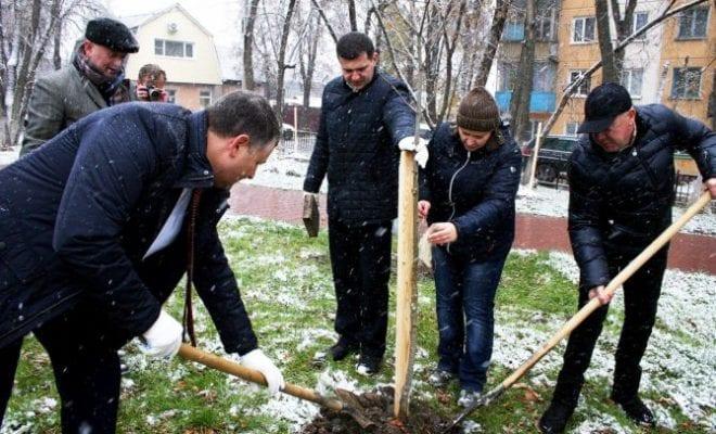 ВКалуге созданием зеленого пояса вокруг города займется рабочая группа