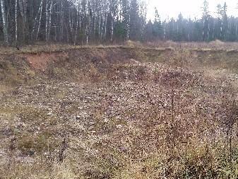 Запущенный земельный участок