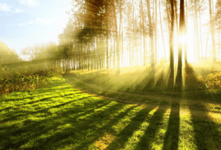 Cолнце и природа