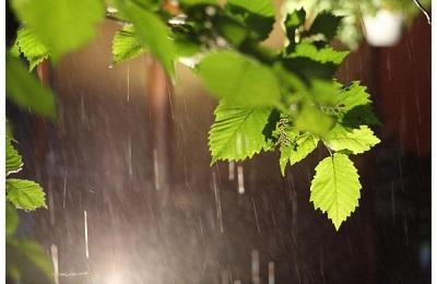 Погода дождь