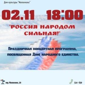 День единства2