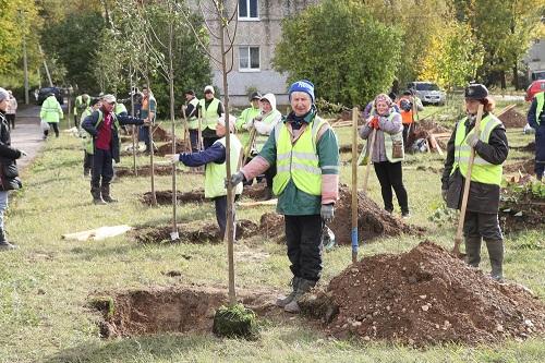 Сажают деревья в КОЛЮПАНОВО