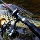 Изменения в законе о рыбалке