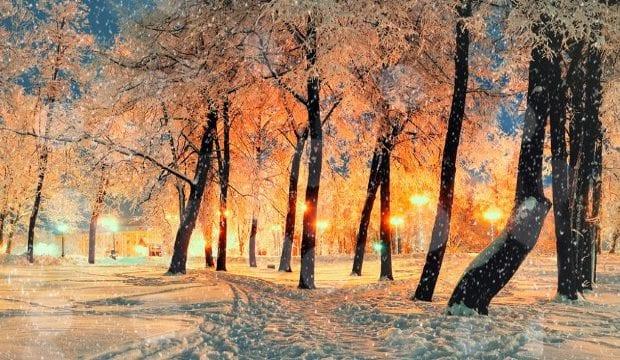 Погода на новогодние праздники