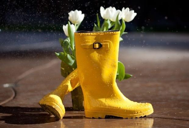 Весенние дожди