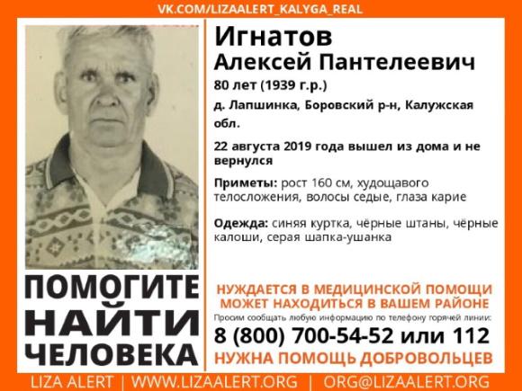 В Боровском районе пропал 80-летний пенсионер